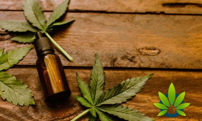 Hemp Oil Health Benefits Vs Side Effects: Proper Use And Optimal Dosage Guide