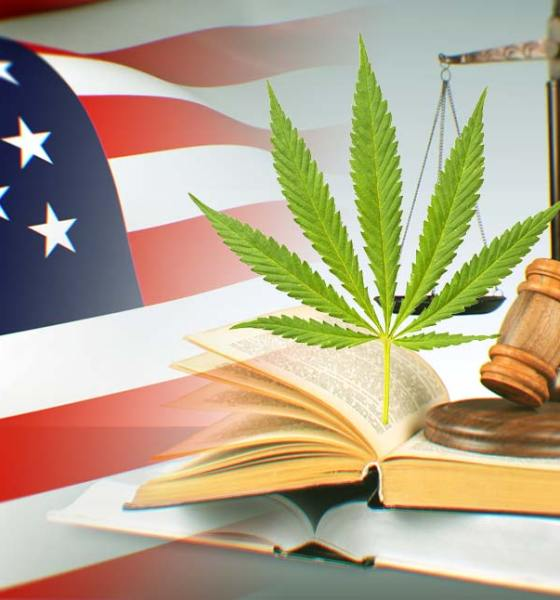 Donald Trump Officially Legalizes Hemp as CBD Oil Products Thank POTUS' 2018 Farm Bill