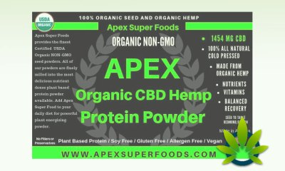 APEX CBD Hemp Protein Powder