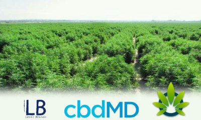 CBD Manufacturer Cure Based Development (cbdMD) Acquired By Level Brands, Valued At $120 Million