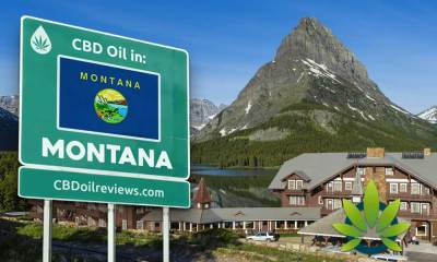 CBD Oil Legality in Montana