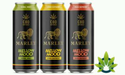 New Marley + CBD Mellow Mood Cannabis-Infused Drinks Announced By New Age Beverages