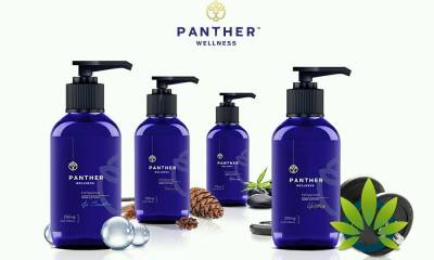 panther wellness full spectrum hemp oil