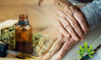 Top 10 CBD Oil Health Benefits for Older-Aged Senior Citizens: How Cannabidiol Effects the Elderly