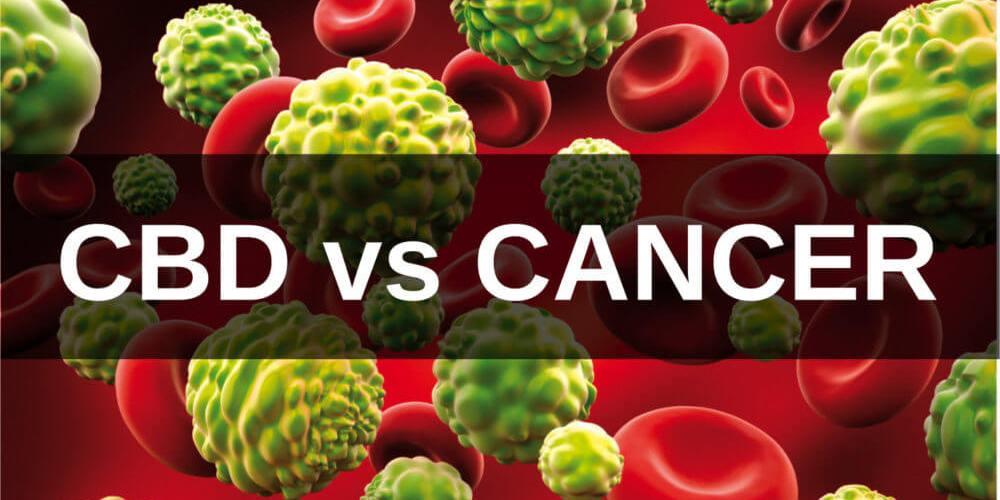 cbdvcancer