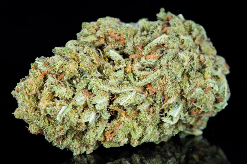 Space Candy Hemp Bud, With CBD