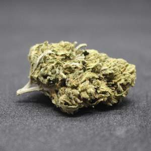 Mango Haze hemp flower. The price has dropped below £10