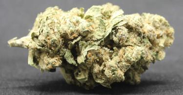 Amnesia high-CBD premium hemp flower - UK