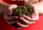 best hemp strains
