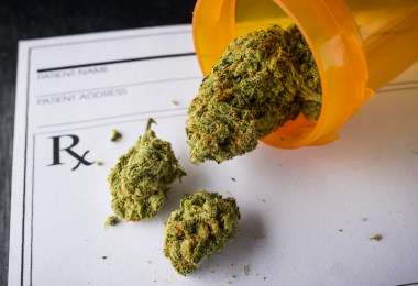 cannabis chronic pain