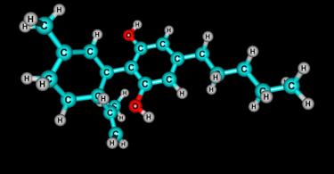 endocannabinoids phytocannabinoids