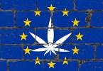 THC 0.3 europe