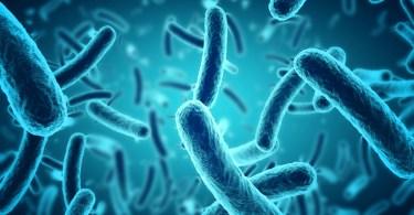 e-cigarettes bacteria