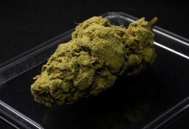 cbd moonrocks