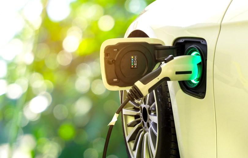 cannabis electric vehicle