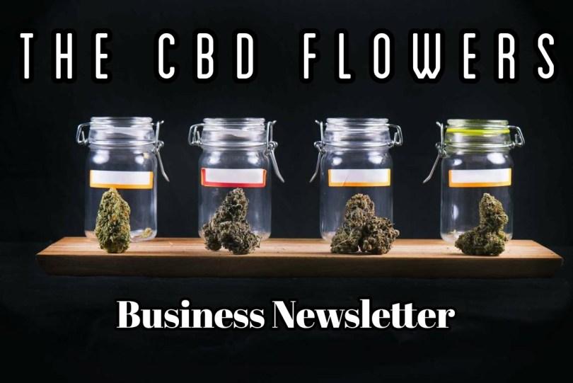CBD Flowers Business Newsletter