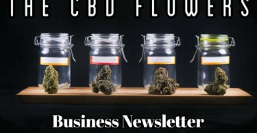 CBD Flowers Business Newsletter