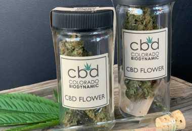 prepackaged cannabis hemp