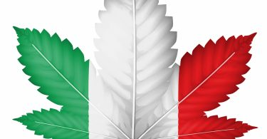 italian cannabis