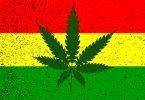 rastafarian cannabis