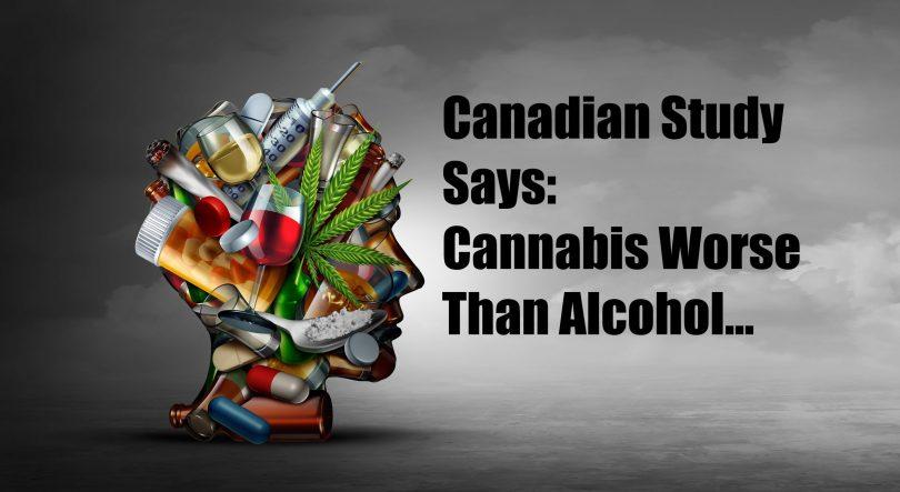 cannabis worse than alcohol