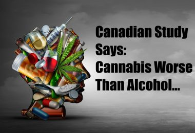 cannabis worse than alcohol