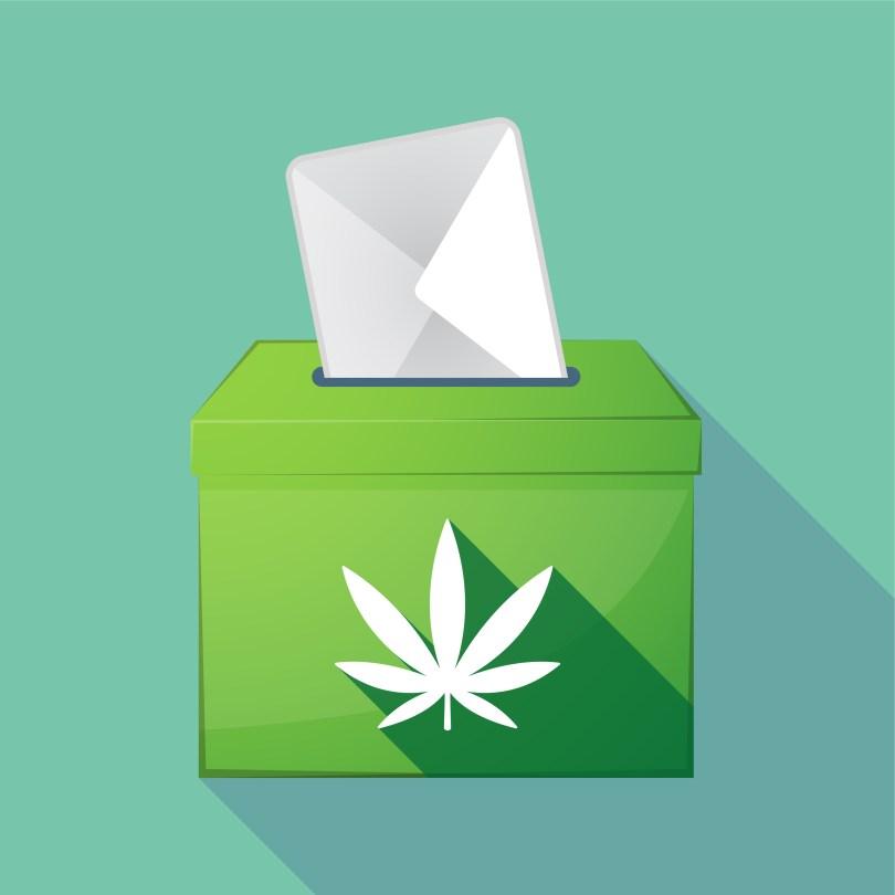 cannabis vote