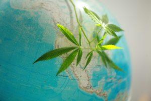 America is cannabis friendly