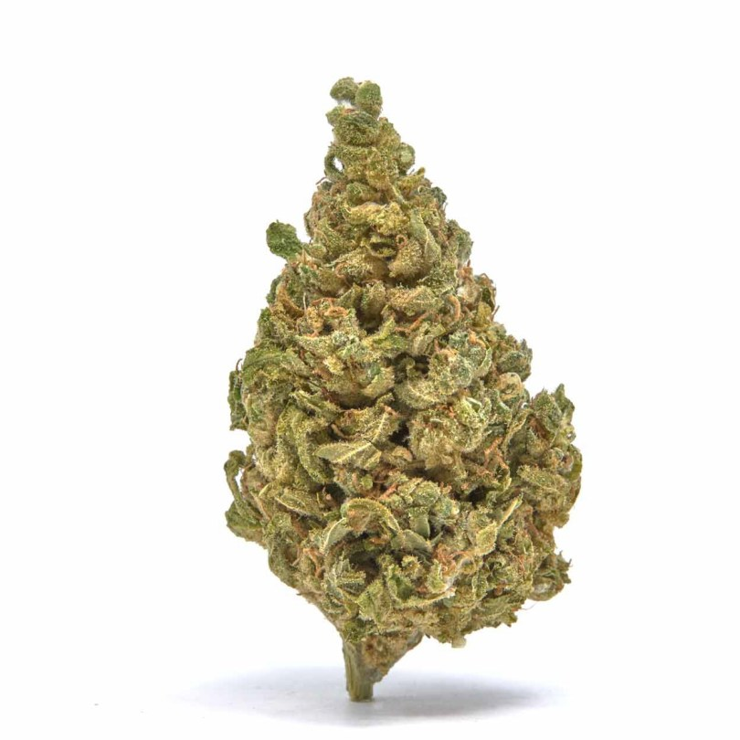 Fortified White Whale CBG/Delta 8 Flower - Only $390/lb