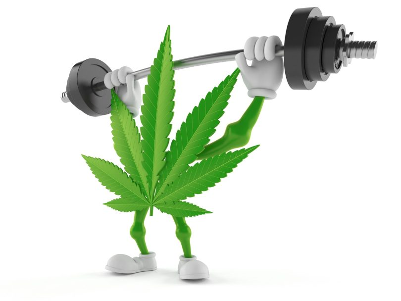 cannabis products workout