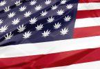 cannabis legislation
