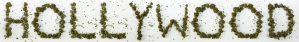 cannabis and Hollywood