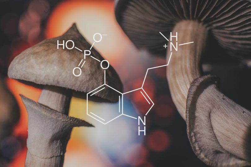 magic mushroom legalization