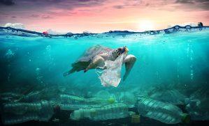 plastic in oceans