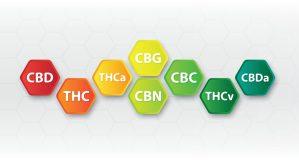 total THC