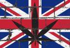 uk cannabis