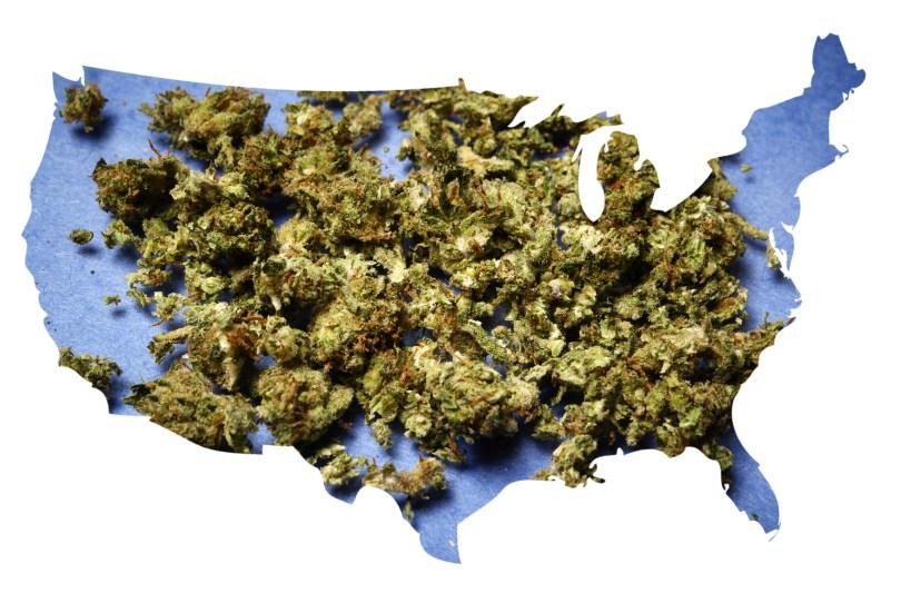cannabis RICO crimes