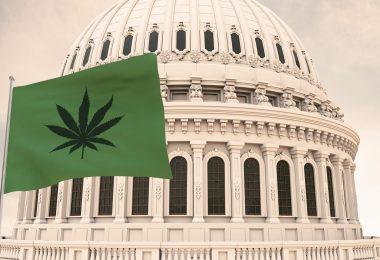 MORE Act decriminalize cannabis