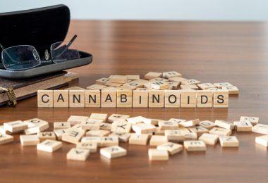 cannabis cannabinoids future