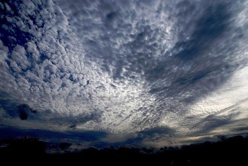 Mackerel Sky (Used by permission.)