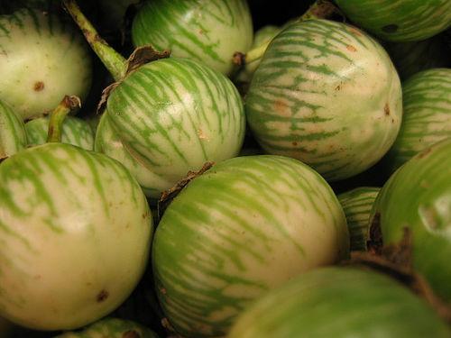 eggplants-more-green