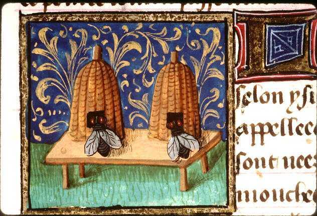 Bees France medieval