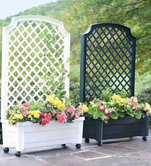 Patio Decor Trellis for Garden Screening Ideas
