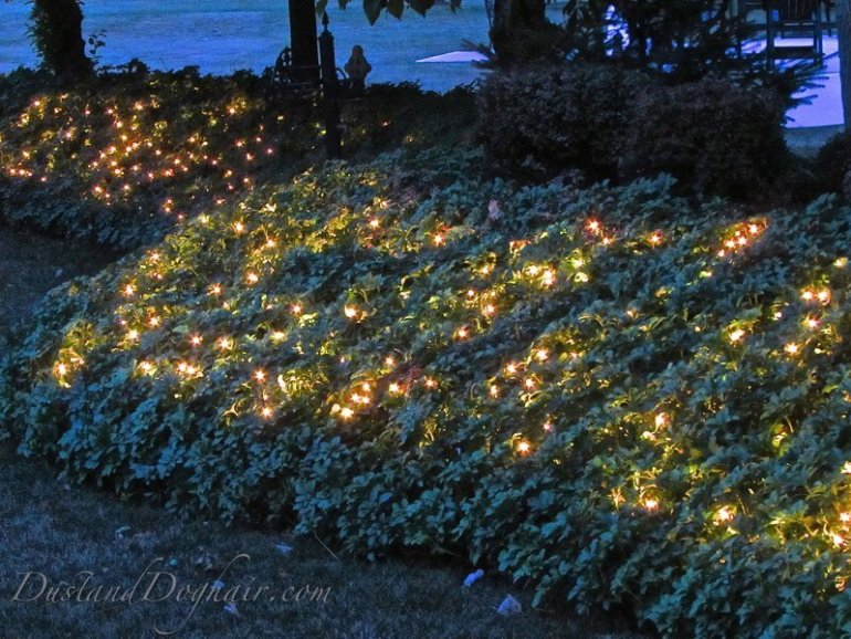 garden glow lighting