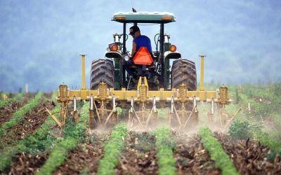 Jóvenes y agricultura, ¿un tándem imposible?