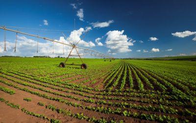 Cómo realizar el diseño de un sistema de riego agrícola