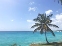 barbados visa remote citizenship by investment
