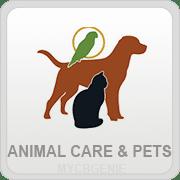 Animal Care Pets