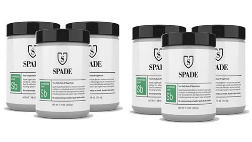 Spade Superfoods Blend Review