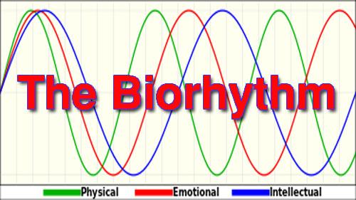 The Biorhythm Review